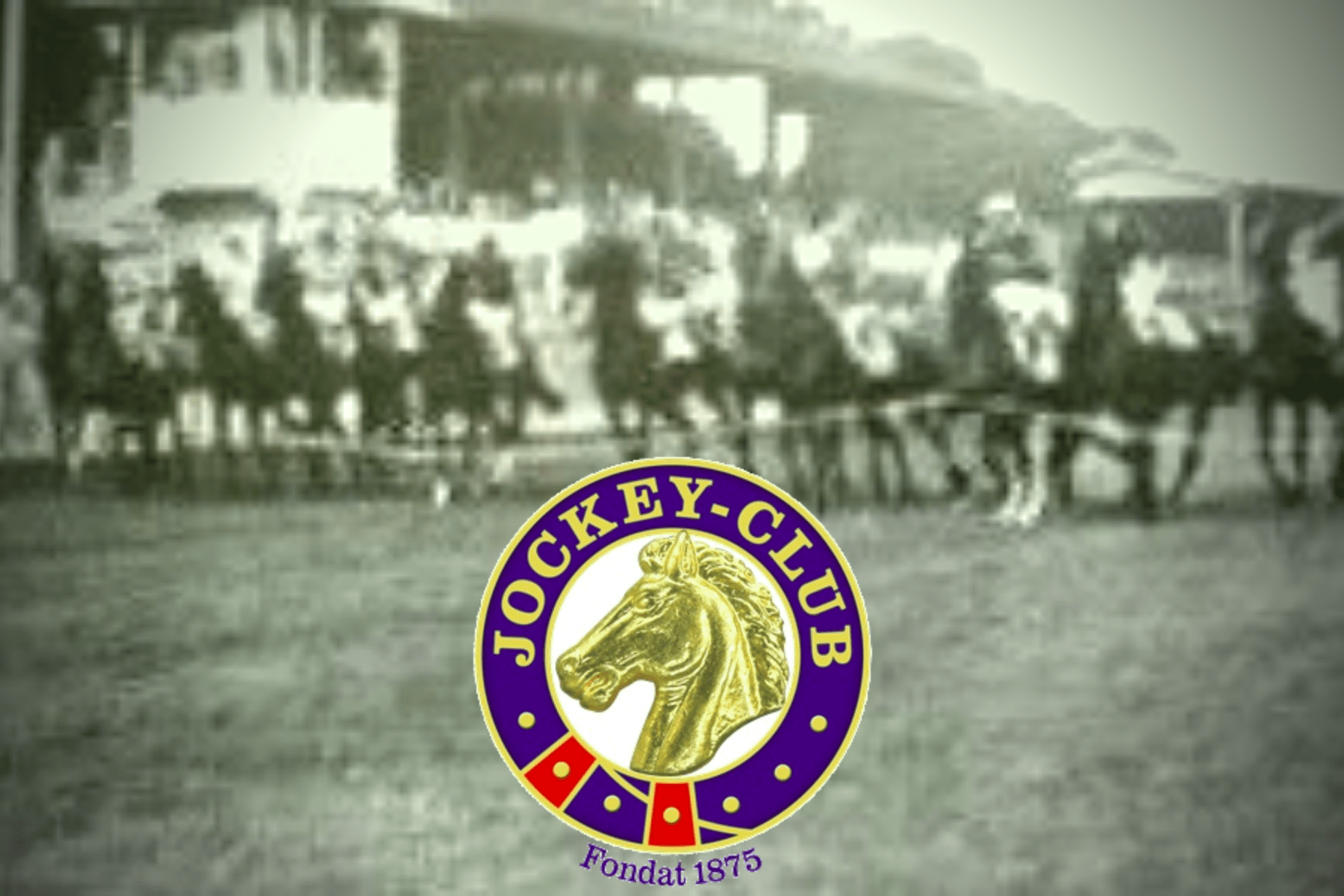 Coperta Jockey Club