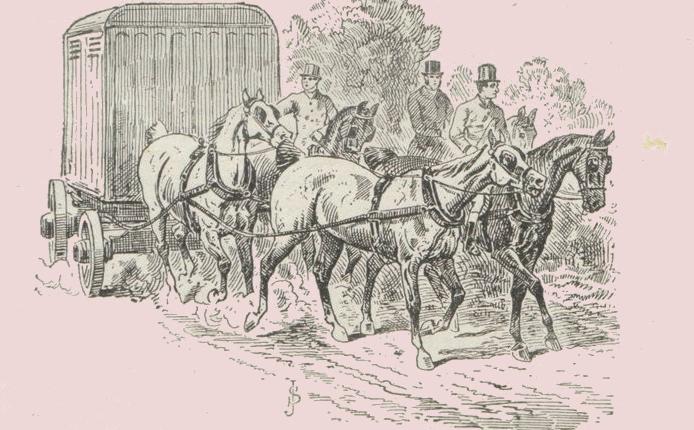 Transportul cailor