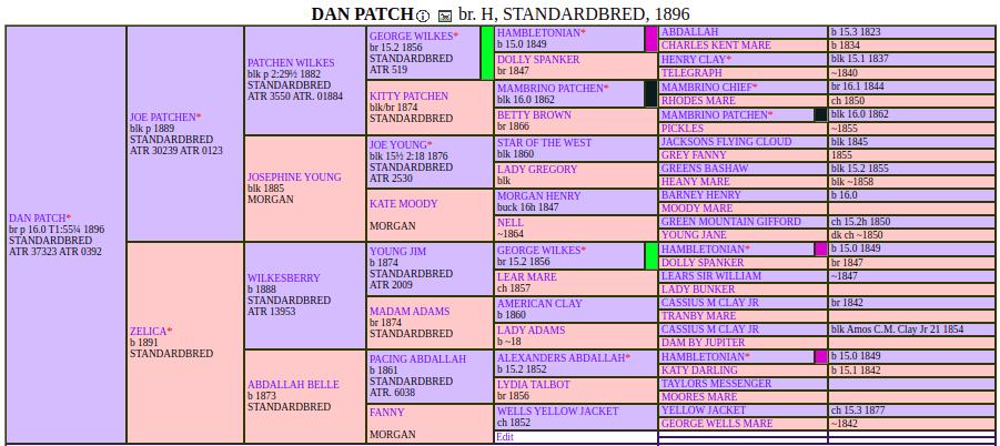 Dan Patch pedigree