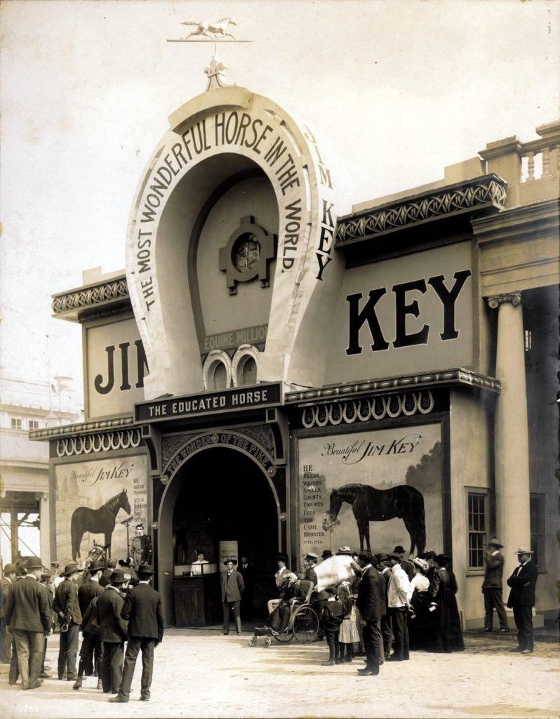Spectacolele lui Jim Key
