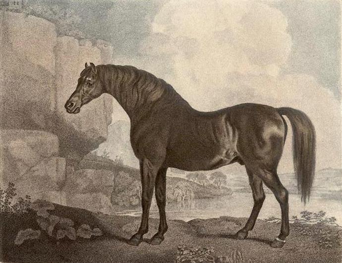 Marske_horse