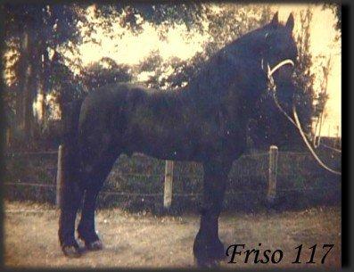 Frizian