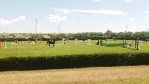 Cupa Calului de Sport Românesc
